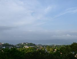View of Mandeville from Buchanans